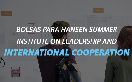 Hansen Summer Institute on Leadership and International Cooperation Scholarships