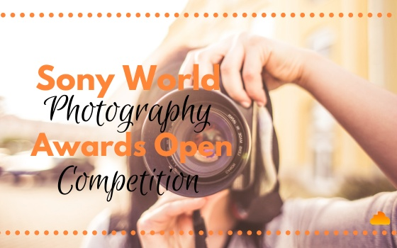 Sony World Photography Awards